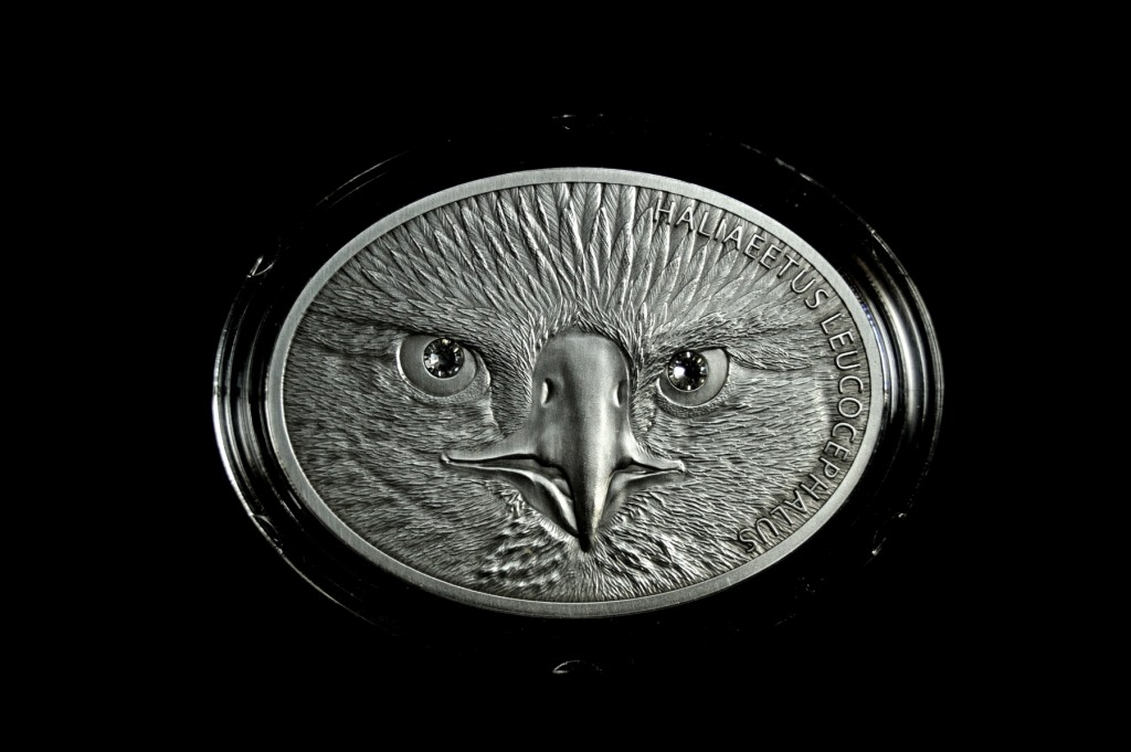 2013白頭海鵰精鑄銀幣