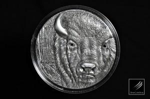 歐洲野牛仿古銀幣