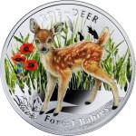 03_Forest Babies_Roe-Deer_reverse