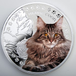 03_Maine_Coon_reverse