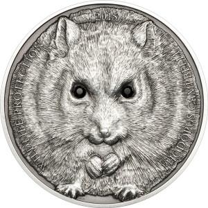27284_Campbells Hamster-Ag_r