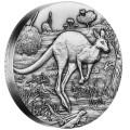 0-Australian-Kangaroo-2oz-Silver-Antiqued-HighRelief-Reverse