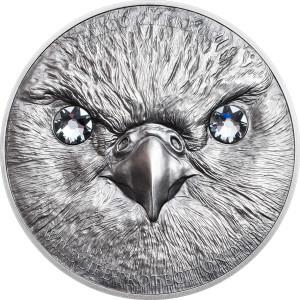 27563_Wildlife Protection 2016 - Falco cherrug Ag_r